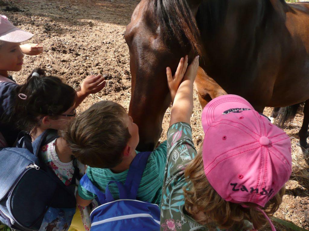 Enfants de 3 à 5 ans qui caressent un cheval